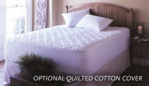 ErgoSoft Mattress Topper with Quilted Cotton Cover
