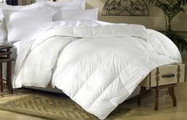 Best Value King Goose Down Comforter